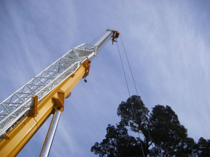 Perth Zoo 220 Tonne Crane Photo1