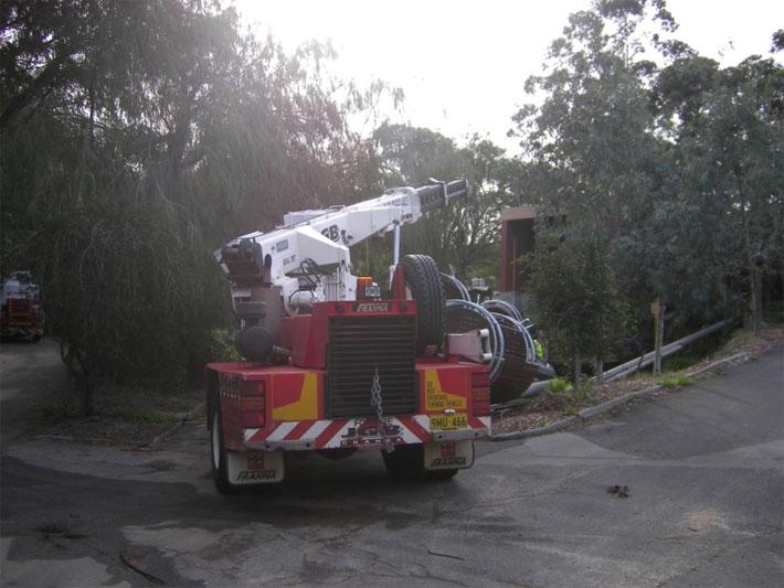 Perth Zoo Living Iron Photo3
